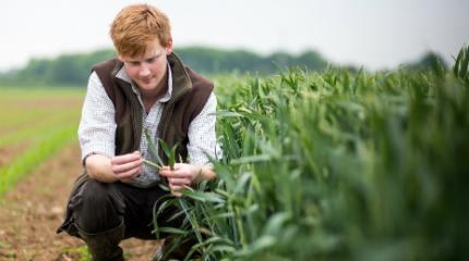Agronomy short courses to improve food supply chain productivity