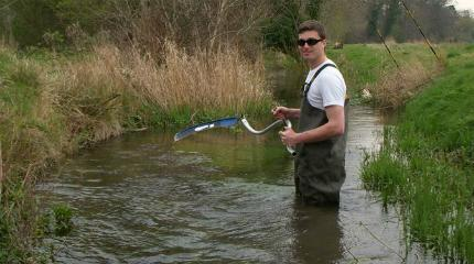 Improving the management of chalk streams