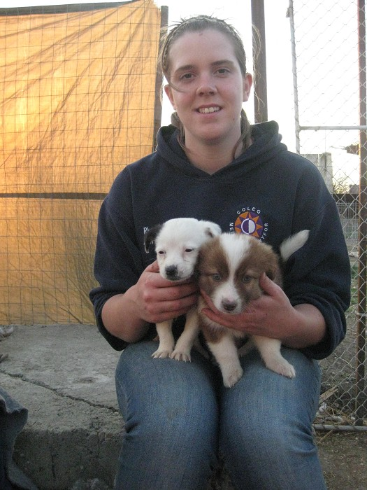 Megan with two puppies