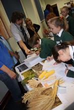 Children from Woodlands Primary, Telford, learn about crops with Dr John Reade from Harper Adams University