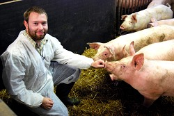 Steve with the pigs at Harper Adams