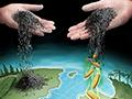 """""""No biochar benefit for temperate zone crop yields"""" says new report"""