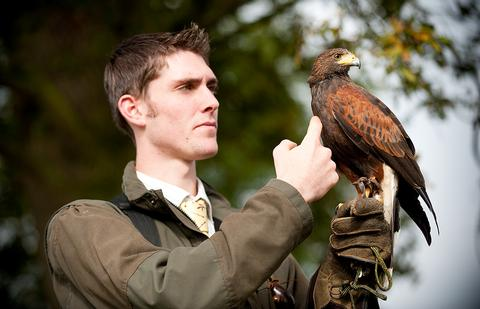 Merlin Becker demonstrates his falconry skills