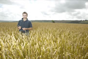 Student standing in a crop field