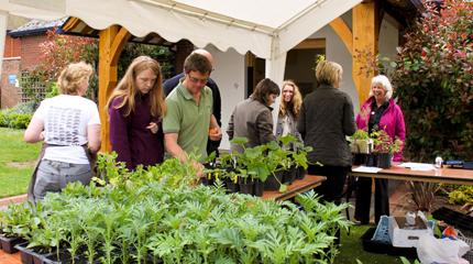 Annual plant sale raises funds for Shropshire hospice