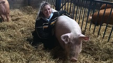 Pig Industry Scholarship for enthusiastic student Bryony