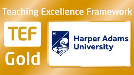 Harper leads the field - striking gold in TEF ratings