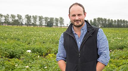 Collaborative project to improve forecasting of UK's most important potato pest