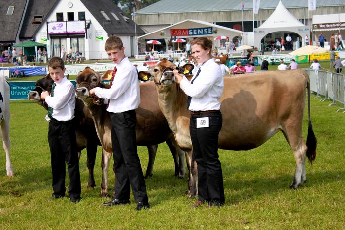 The dairy young handlers top three