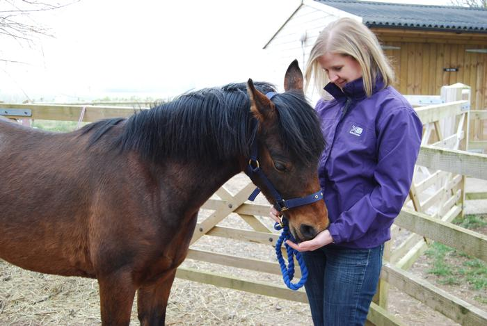 Star gets to know Companion Animal House Manager, Sue Jeavons