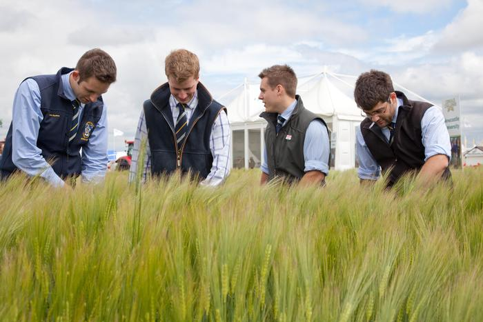The team inspects their crop at the Cereals show