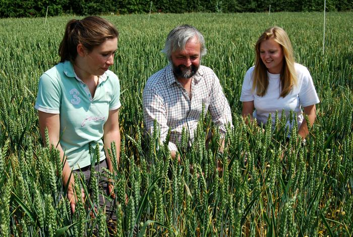 Dr Grove (centre) joins members of the CERC trials team to inspect the crop