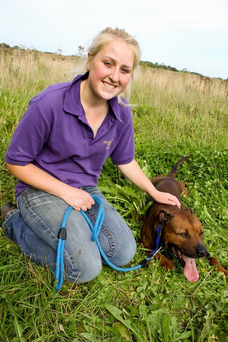 Kennel assistant Leanne Breeze with Tizer the Staffy