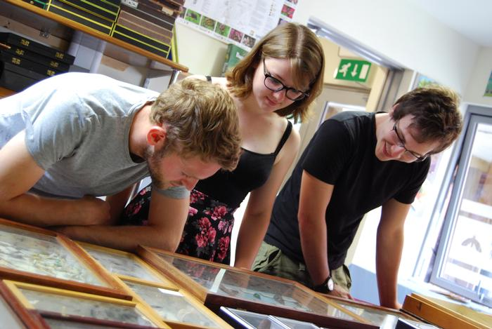 MSc Entomology students choose their favourites