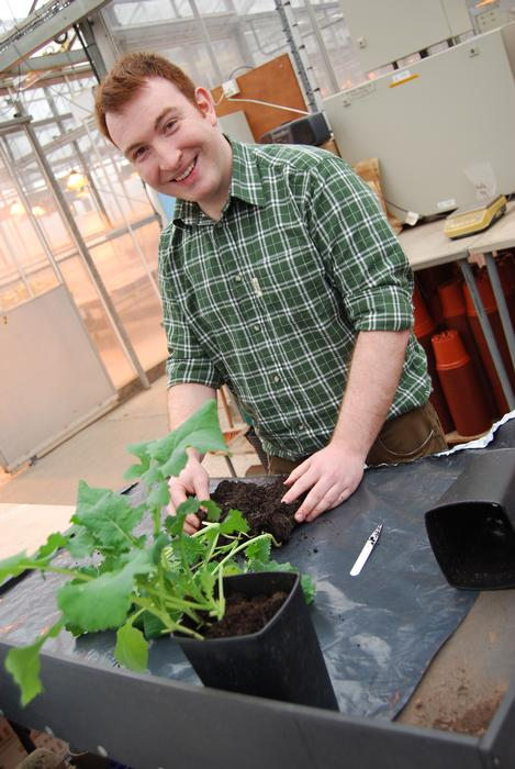 Alex McCormack working in the on-campus glasshouses