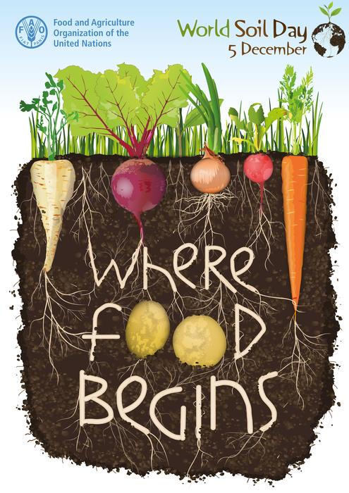 World Soil Day: Dec 5