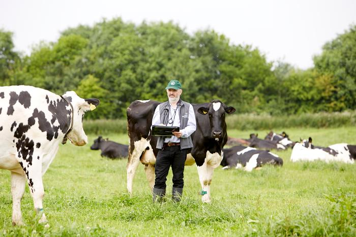 Dr Rutter monitoring the Harper Adams dairy herd