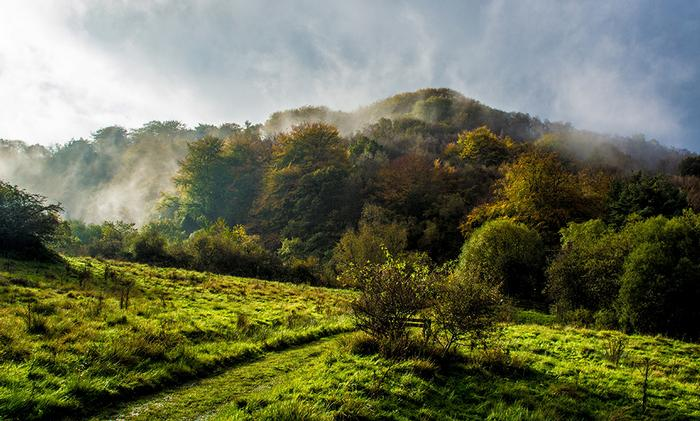 Misty Clough Meadow by Carl Capewell