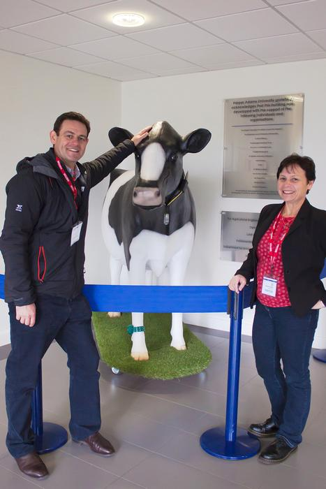 In the Agricultural Engineering Innovation Centre with Clover the cow.