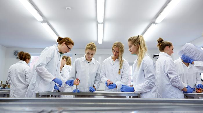 Veterinary Physiotherapy students in the anatomy laboratory at Harper Adams University