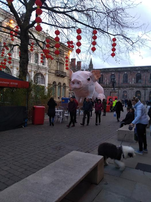 The society went to Manchester for Chinese New Year celebrations
