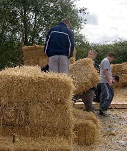 An example of young people working on a care farm