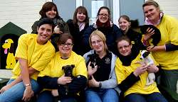 Students take part in a charity walk for the Dog's Trust