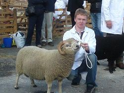 Masham Sheep Fair Champion, 2010