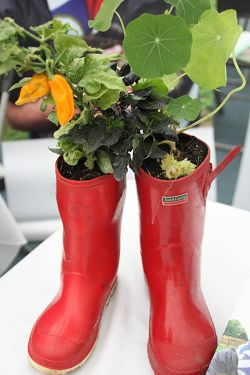 Plant pot wellies on one of the stalls.