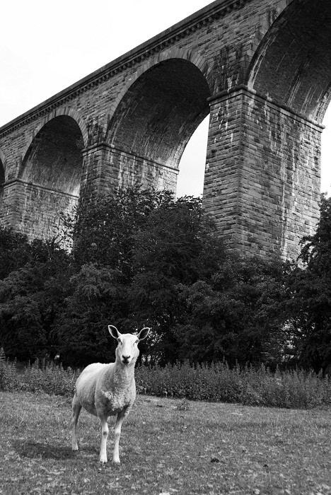 Chirk Viaduct by Claire Robertson Bennett