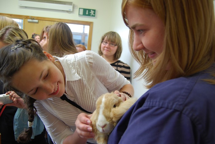 Jen shares Luke the rabbit with the girls