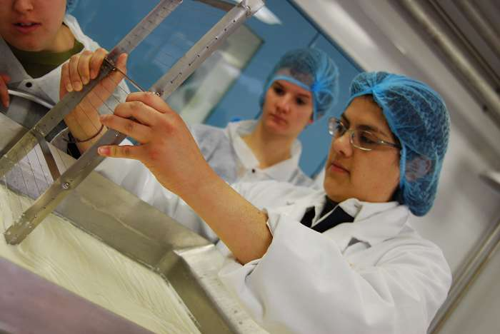 Some of the EU students  try their hand at making cheese at the RFA