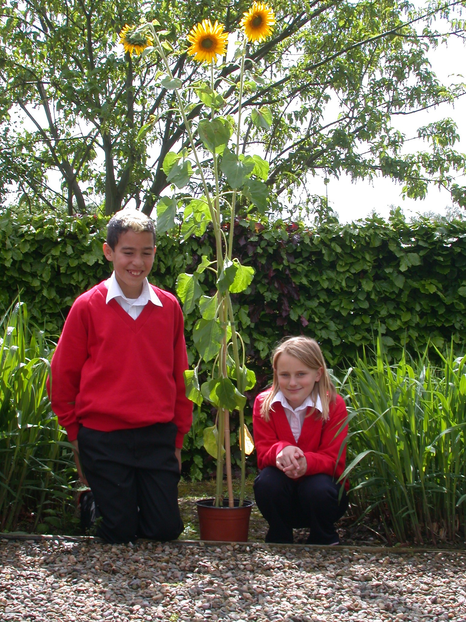Pictured are James Wild and Elizabeth Cartwright, both 10, from Doxey Primary School.