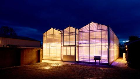 The Jean Jackson Glasshouse