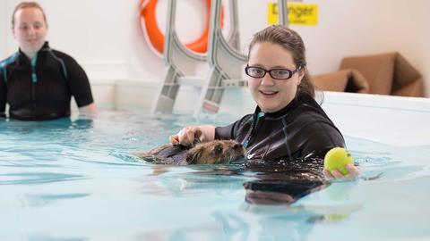 Students in the hydrotherapy pool with Haggis